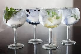 gin tónico 2