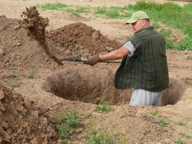 digging-hole-p-com-92054054