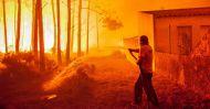 fogo131